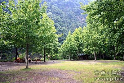 新竹尖石美樹營地 @定點露營