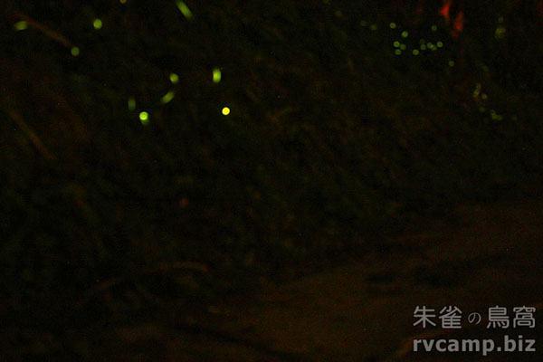 新竹五峰賽夏有機農場露營區 @定點露營