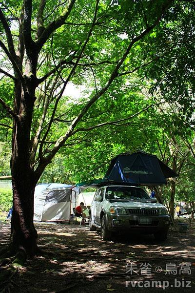 新北市坪林綠野山林 @定點露營